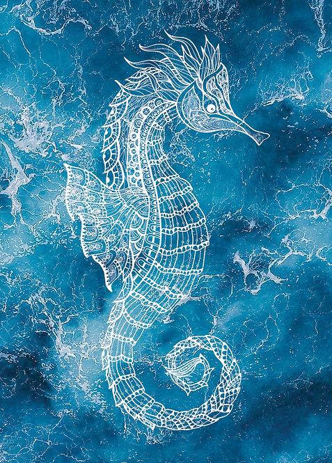 #570 - Seahorse