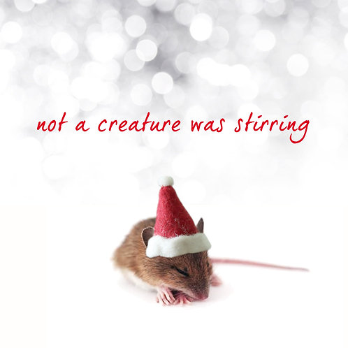 #344 - Not A Creature Was Stirring