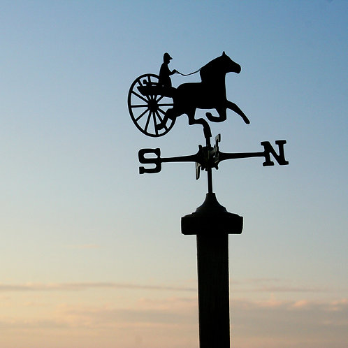 #284 - Weather Vane