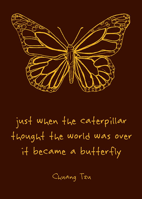 #548 - It Became A Butterfly