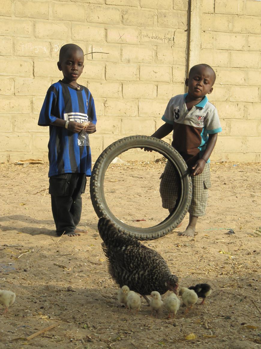 Moussa N'Diaye in Diolk Kadd, Senegal