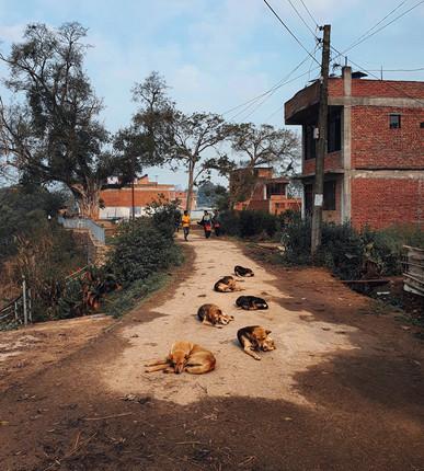 Dikesh Maharjan in Thecho, Nepal