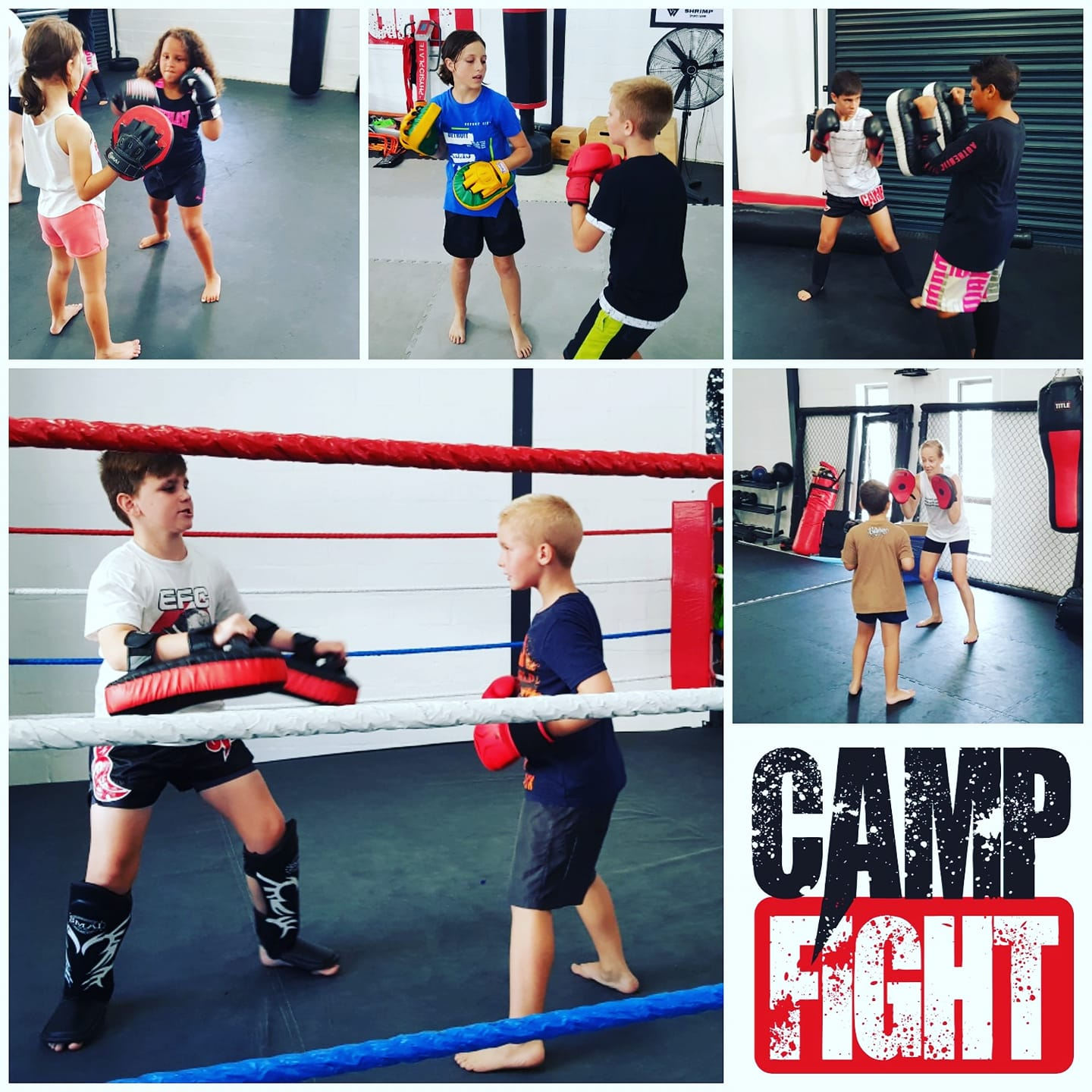 Camp Fight, MMA, South Africa, Cape