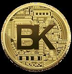 Blockkoin Exchange Token for Coin Offering