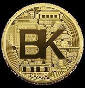 BlockKoin coin offering token