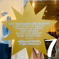 7.12. - Halbach Mode