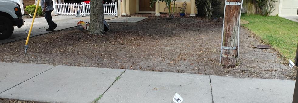 South Tampa Site Prep