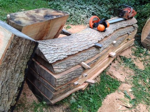 tree stacked into planks