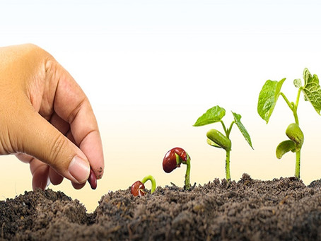 La récolte spirituelle