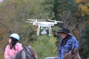 Horses and Drones.jpg