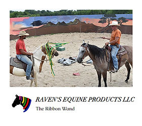 Ravens Equine Products.jpg