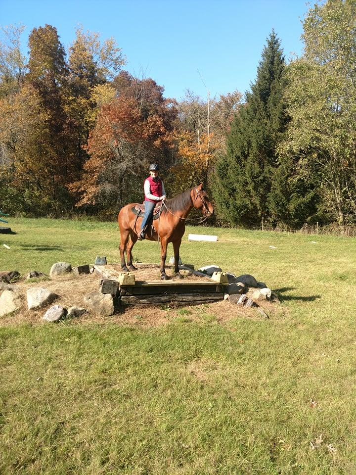 Horse Clinics - Horse Trainers near Madison Wisconsin - Wisconsin Horse Trainers - Natural Horsemans