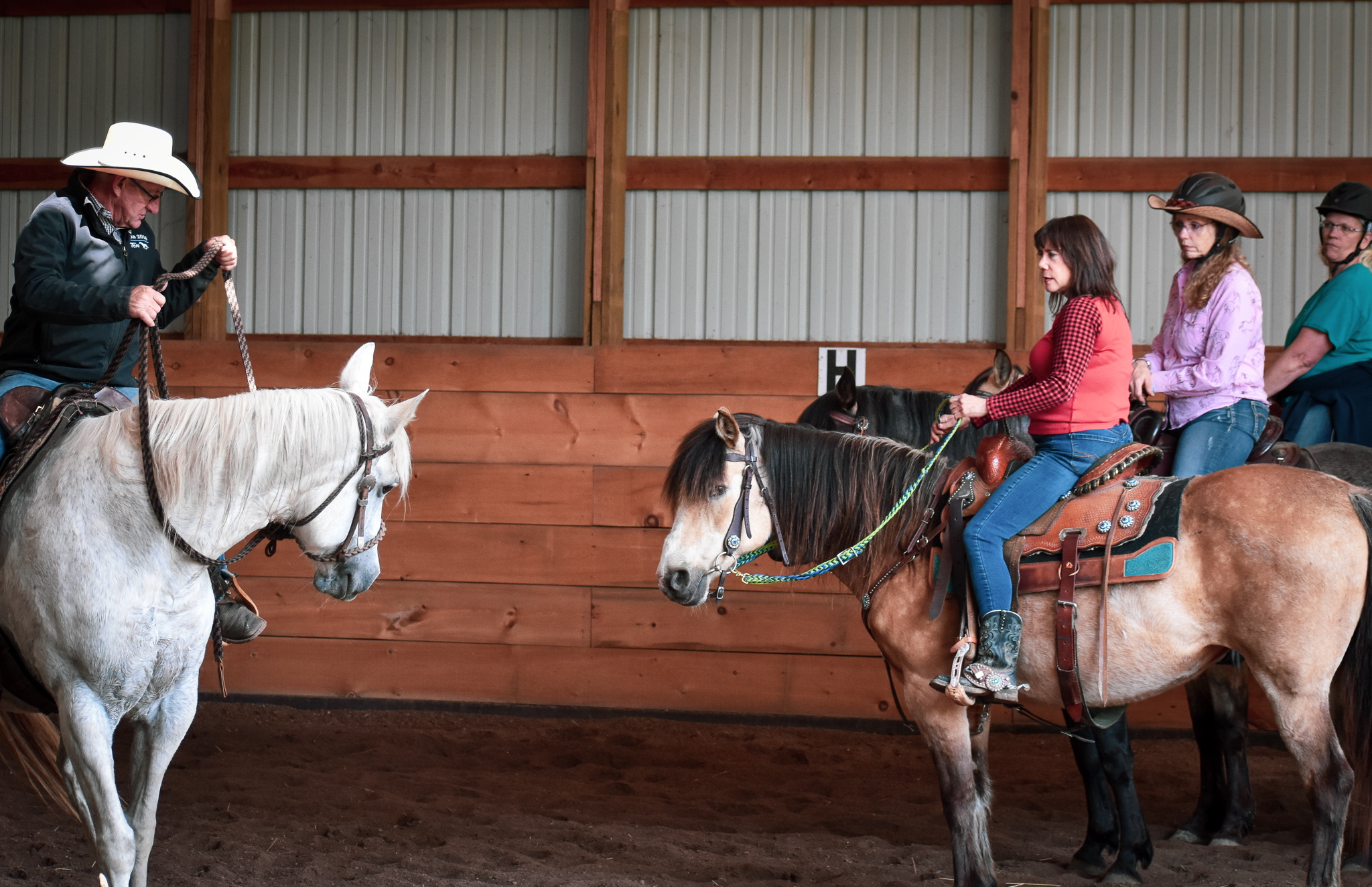 Horse Trainers near Madison Wisconsin - Wisconsin Horse Trainers - Natural Horsemanship Trainers - M
