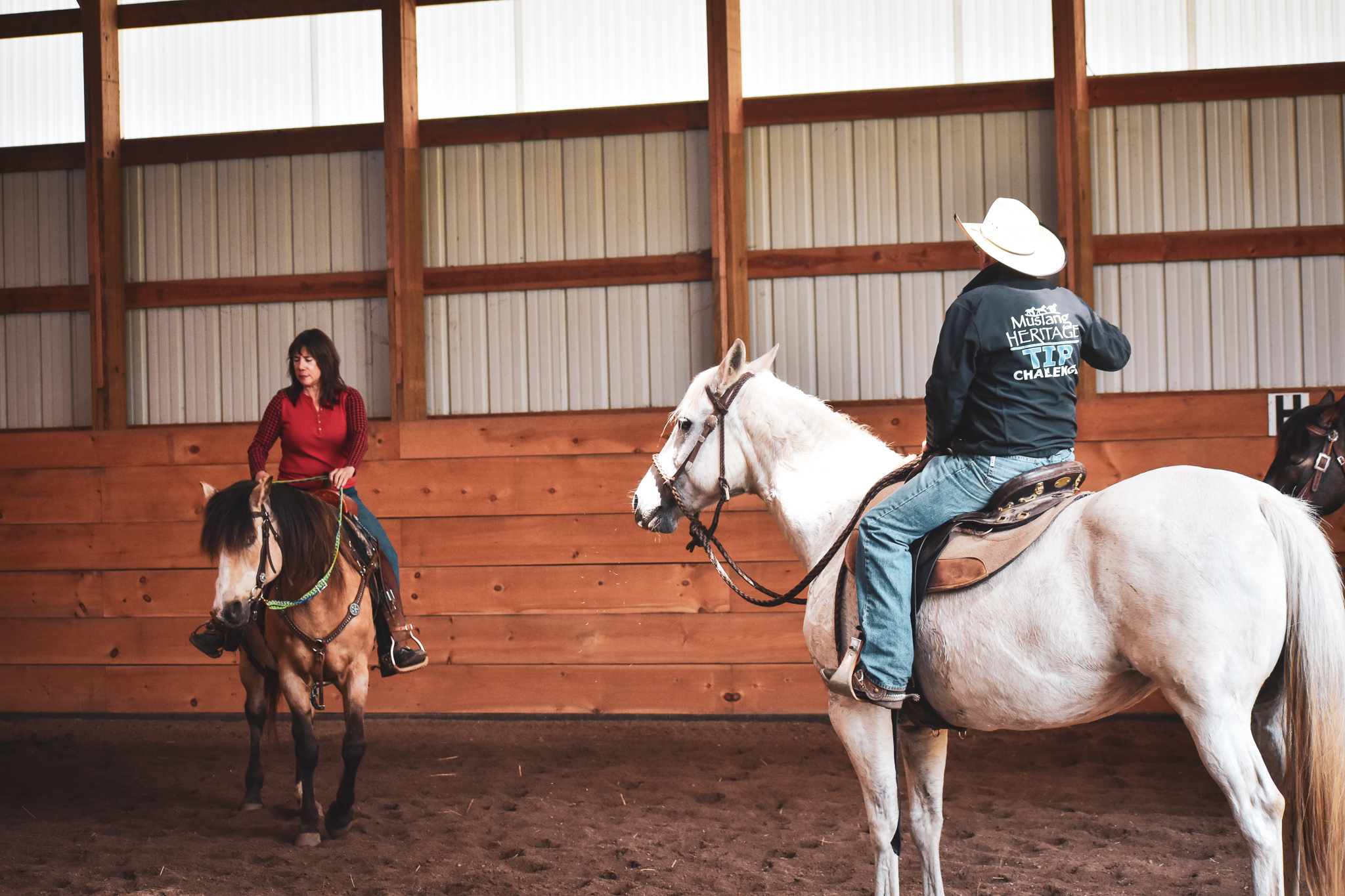 Horse Clinics in Wisconsin - Wisconsin Horse Trainers - Natural Horsemanship Trainers - Mustang Hors