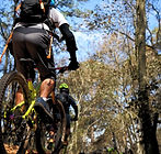 Tour Queso y Vino en Bici