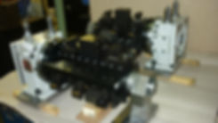 P1090574.JPG