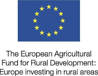 EU Logo 1.jpg