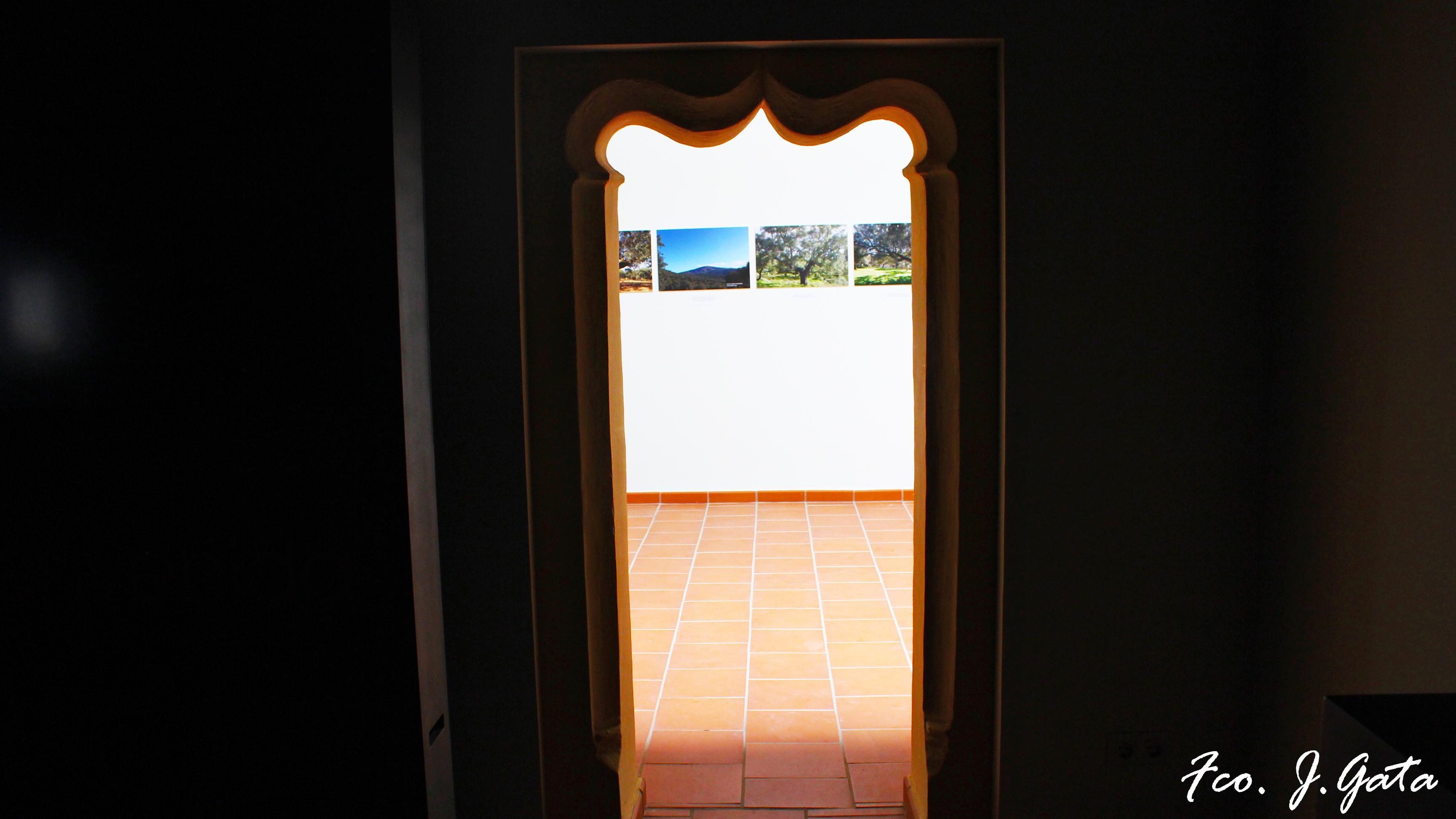 Puerta sala de exposiciones