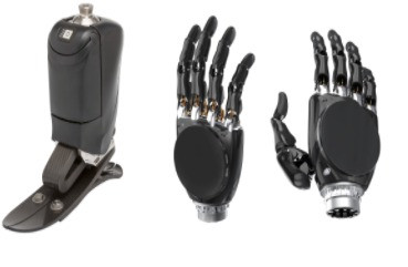 How do prosthetic limbs function?