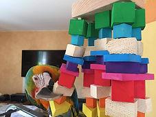 Capitaine Crochu | jouet pour ara | jouet perroquet