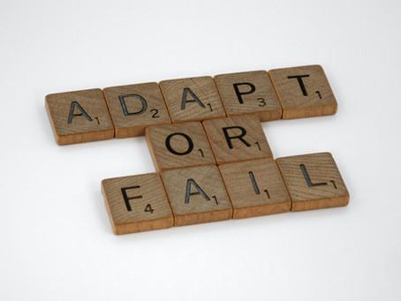 Você se considera uma pessoa adaptável?