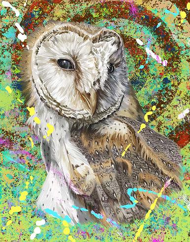 Owl_sample.jpg