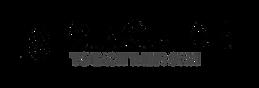 Singulart Logo.png