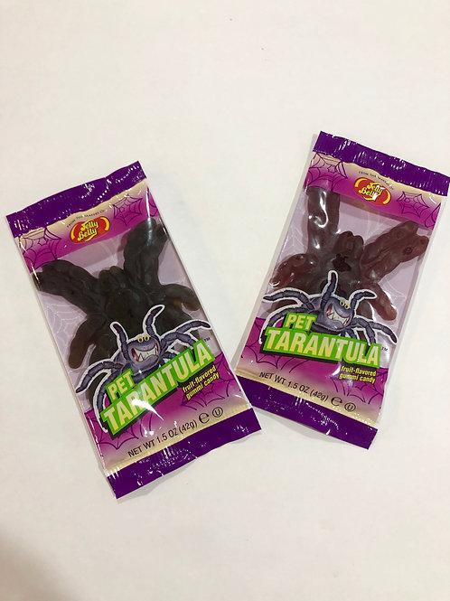 Gummy Pet Tarantula