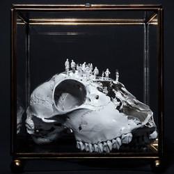 Worlds of Bones
