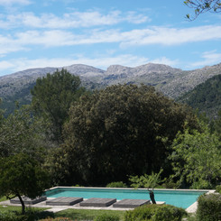 Pool (distant).jpg