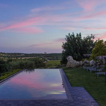 danena pink sunset.jpg