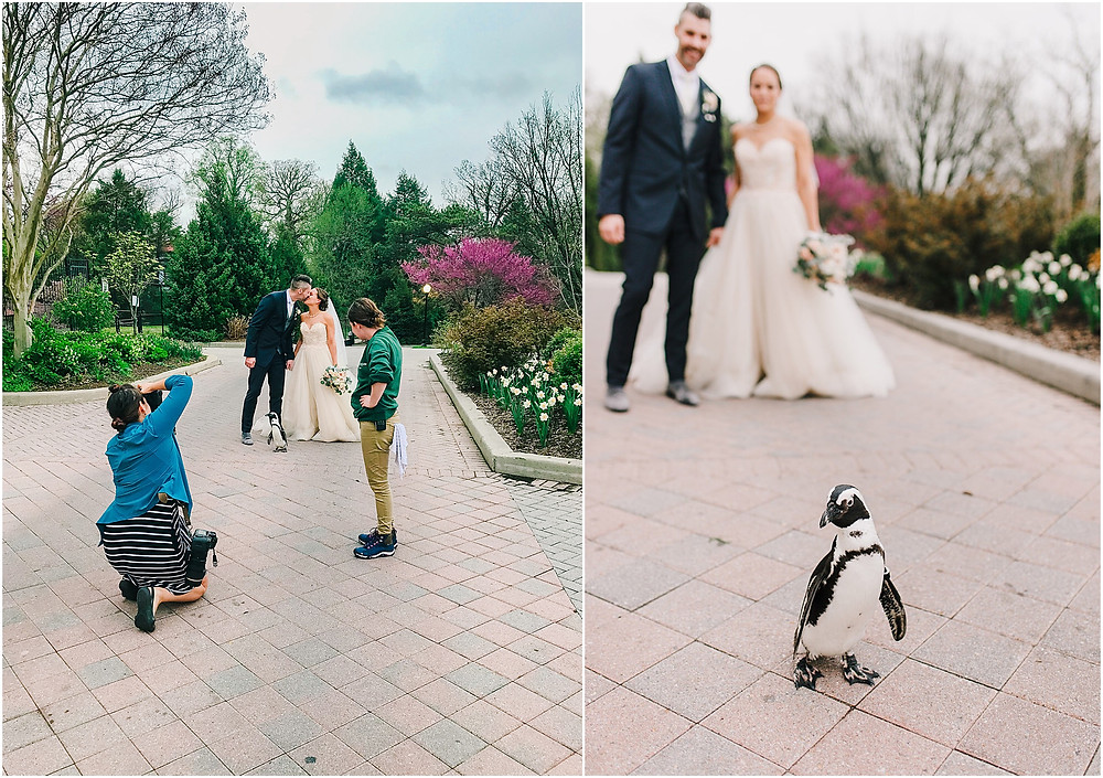 Maryland Zoo Wedding Baltimore Wedding Photographer behind the scenes