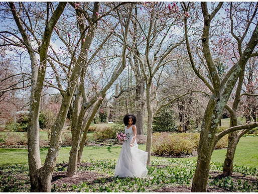 Spring Cherry Blossom Romance | Bridal Inspiration | Baltimore Wedding Photographer