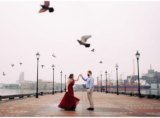 Lindsay and Devin | Rawlings Conservatory Engagement | Baltimore Wedding Photographer