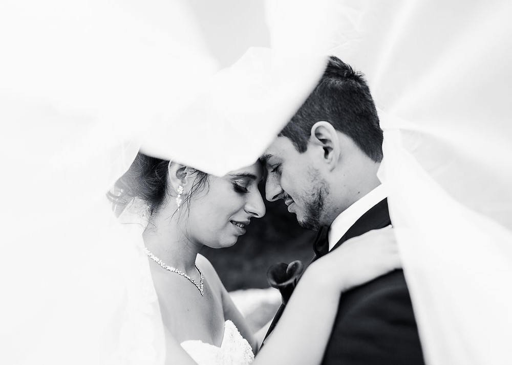 oregon ridge bridal portraits under the veil black and white portrait Katherine Elizabeth Photography