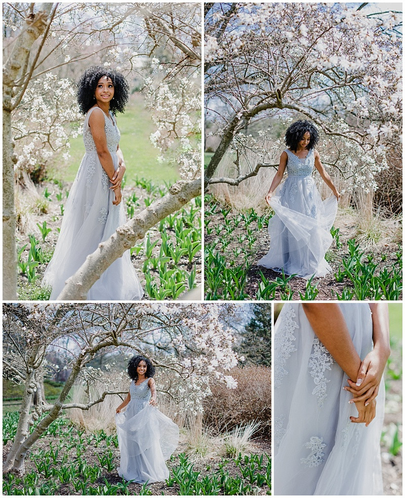 Maryland Cherry Blossom Festivals