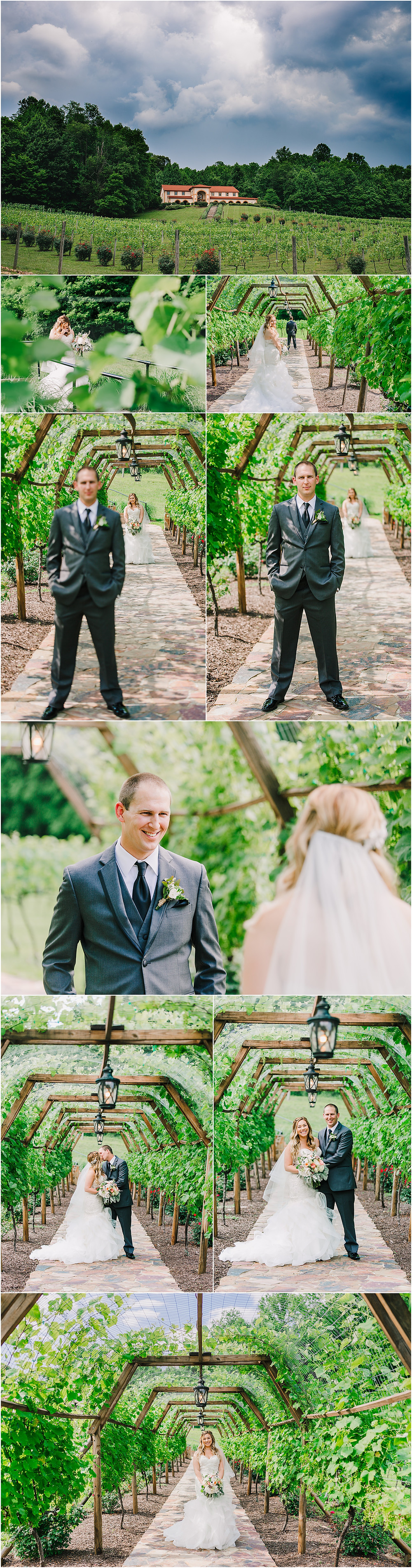 First Look at Running Hare Vineyard - Annapolis Wedding Photographer