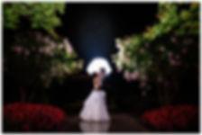 Romantic Wedding Night Portrait - Baltimore Wedding Photography
