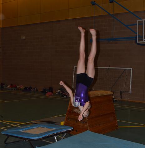 Evesham Gymnastics trampette.jpg