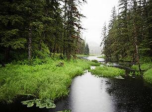 tongass-national-forest_earleliason_isto