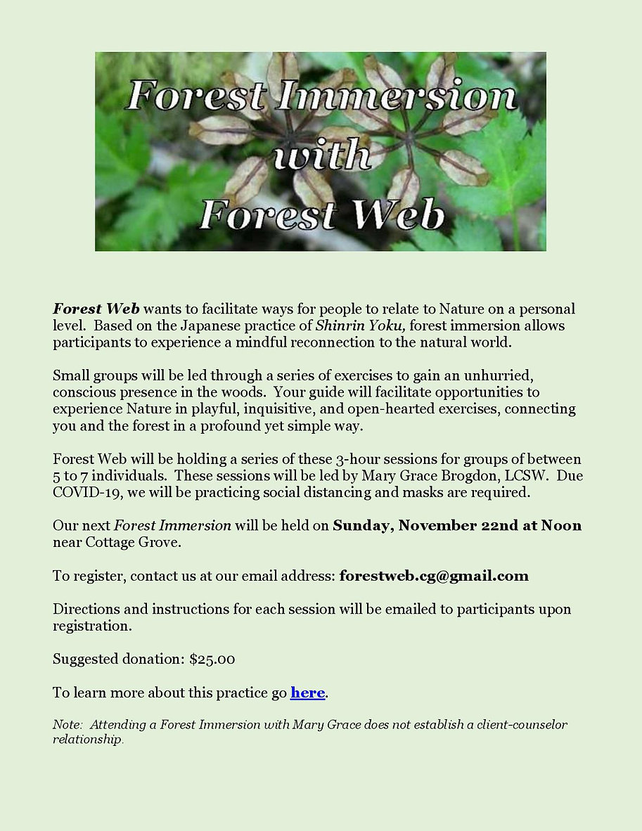 Forest Immersion - Website Event Notice
