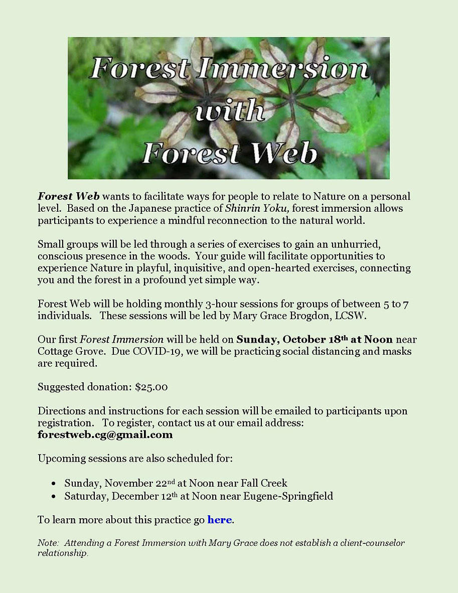 Forest Immersion - Website Event Notice-