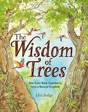 Education Fund - The Wisdom of Trees.jpg