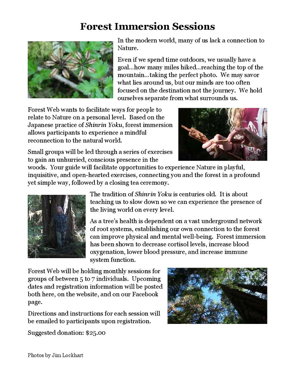 Forest Immersion - Website Text-page-002
