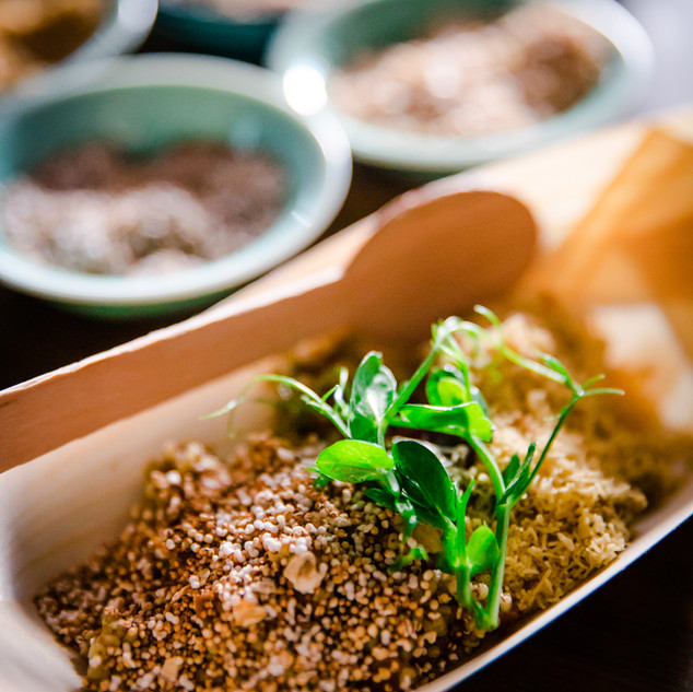 "A ""Farmer To Table"" Dining Pop-Up with SaveAGram produce in #Singapore #Plantbased #Meatless #5coursemeal #PrivateDining"