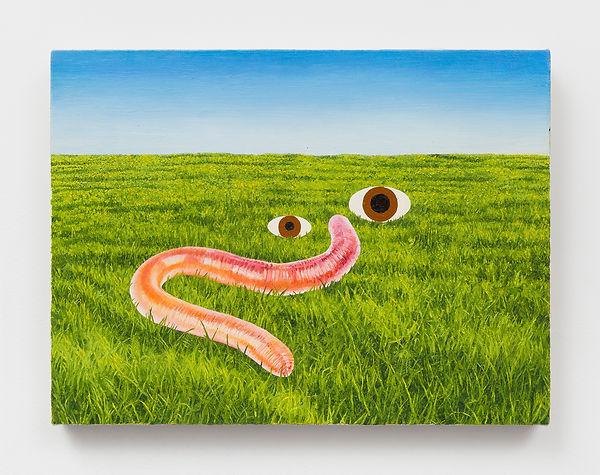 3. Worm field.jpg