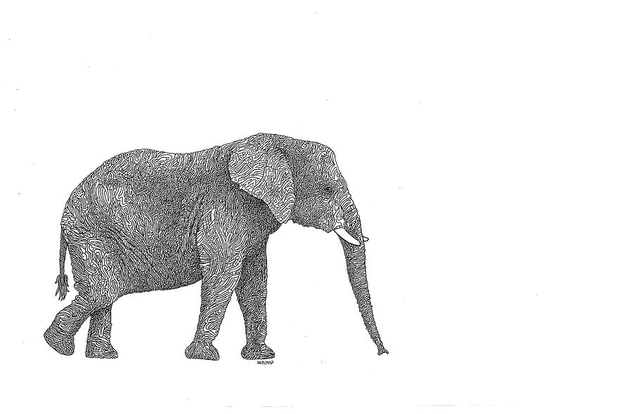 elephant-WEB.png