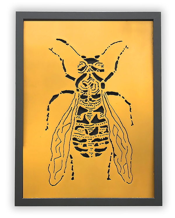 yellowjacket-web_3.png