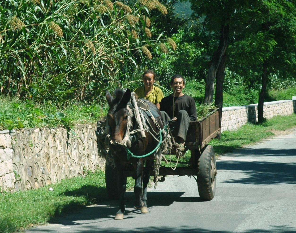 rural scene.jpg