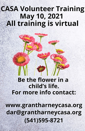 CASA Volunteer Training April 29, 2021 A